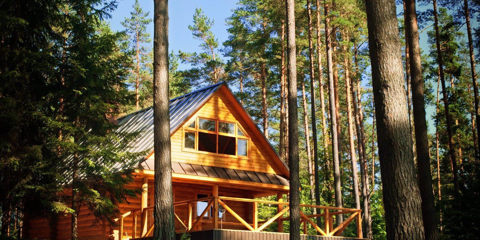 Log Home Restoration VA, TN, WV